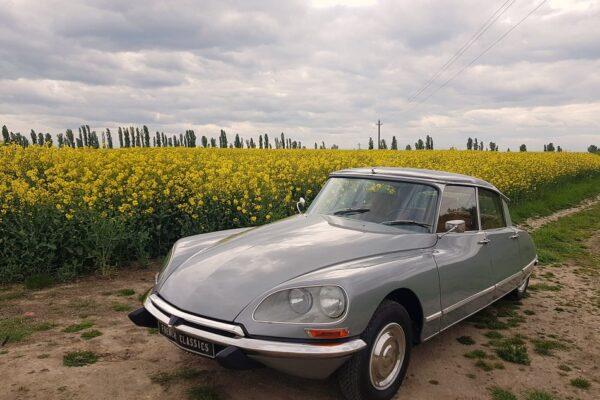 Citroën DS 20 Pallas, 1971 à vendre